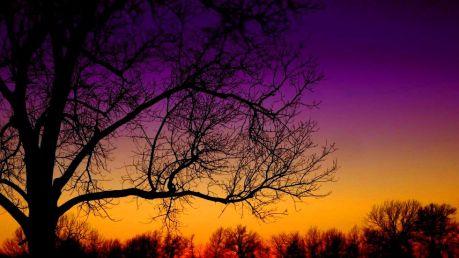 sunset-brookfield_980x551