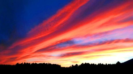 sunset-cedar-grove_980x551