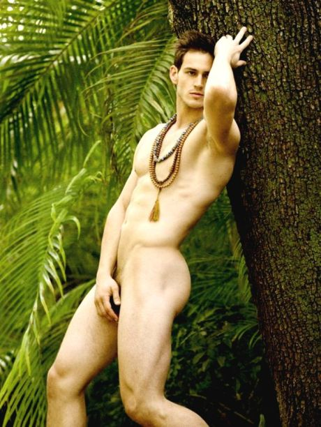 Jungle Fever David Vance 1.1 (1)