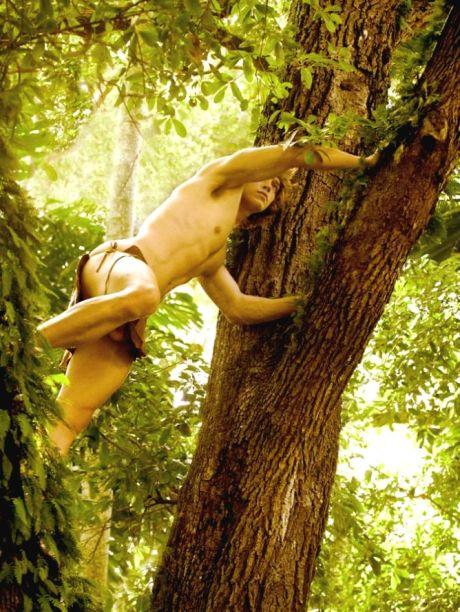 Jungle Fever David Vance 1.1 (2)