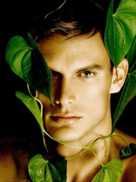 Jungle Fever David Vance 2.1 (13)