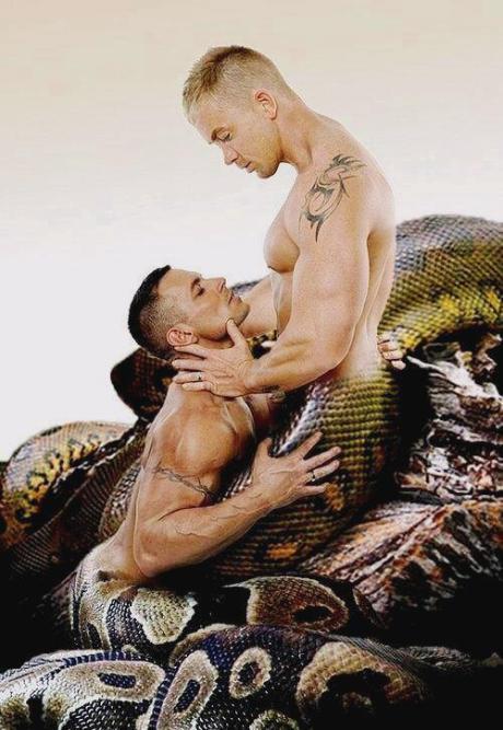 Serpent Erotica